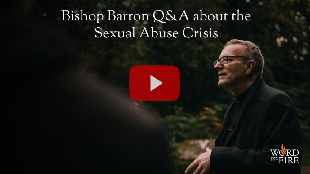 Saint Anne Church : Sexual Abuse Crisis - Bishop Barron's